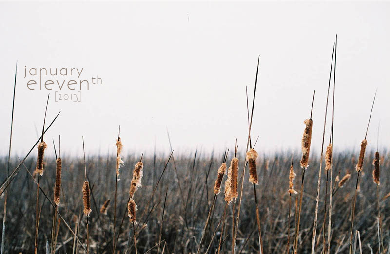 Foggy Film Friday | Dre Lynn Hudson 2013, All Rights Reserved