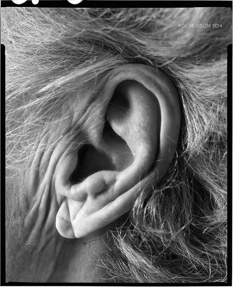 All the Better to Ear You With | Ilford HP5 4x5 large format film | ©Dre Lynn Hudson 2014, All Rights Reserved